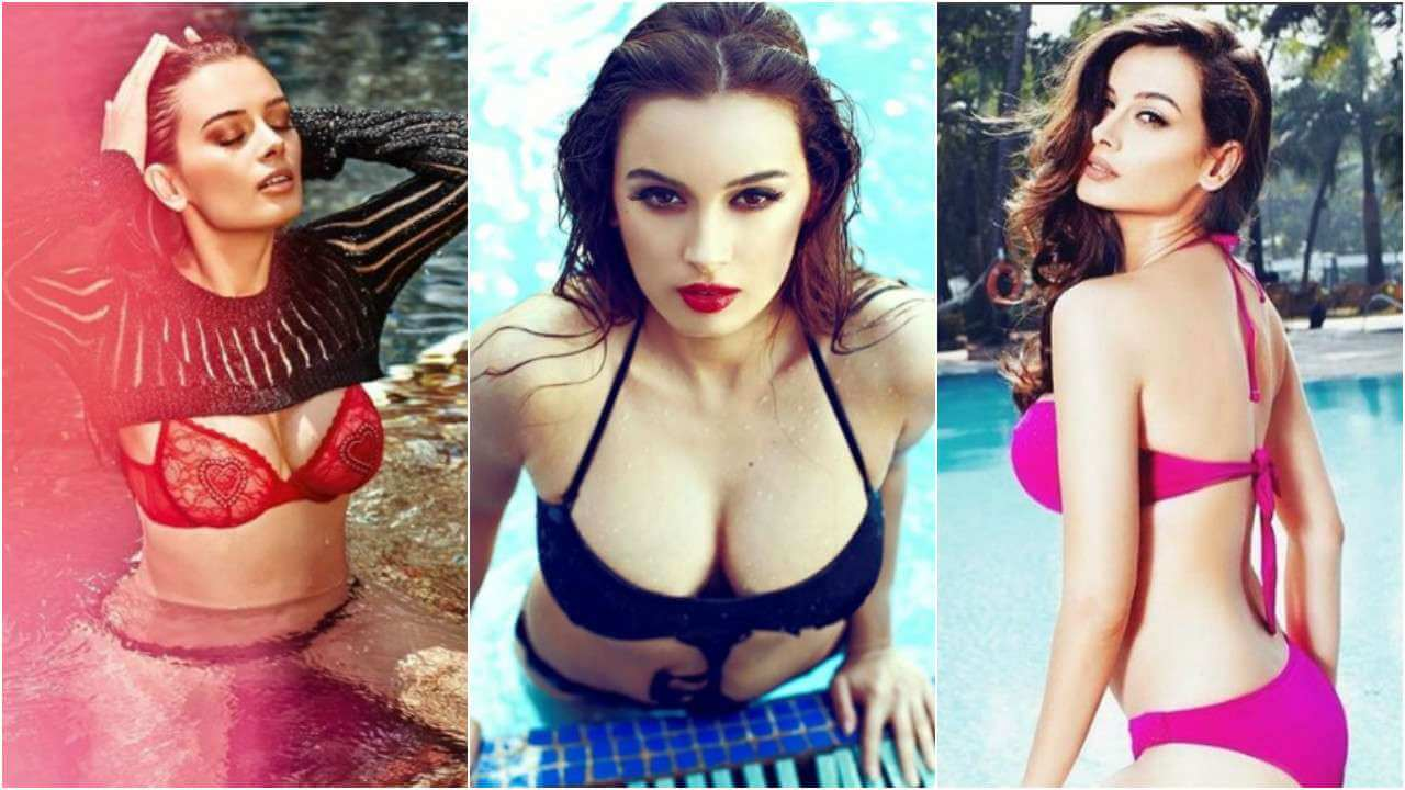 Evelyn Sharma Instagram, Age, Wiki, Biography, Images, Evelyn Sharma Photos,evelyn Sharma Bikini, Evelyn Sharma Hd Pics, Twitter, Facebook, Date Of Birth, Height, Imdb, Youtube, Net Worth, Website (13)