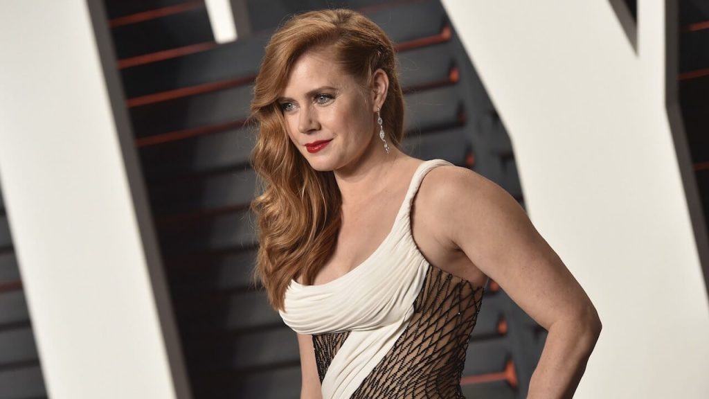 Amy Adams Net Worth, Age, Husband, Height, Awards, Daughter, Images(photos), Family, Biography, Birthday, Education, Website, Wiki, Facebook, Instagram, Imdb, Twitter, Youtube (15)