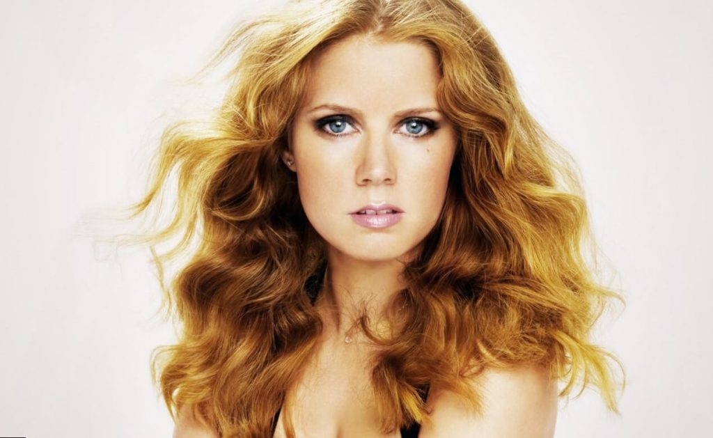 Amy Adams Net Worth, Age, Husband, Height, Awards, Daughter, Images(photos), Family, Biography, Birthday, Education, Website, Wiki, Facebook, Instagram, Imdb, Twitter, Youtube (18)