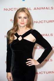 Amy Adams Net Worth, Age, Husband, Height, Awards, Daughter, Images(photos), Family, Biography, Birthday, Education, Website, Wiki, Facebook, Instagram, Imdb, Twitter, Youtube (21)