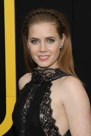 Amy Adams Net Worth, Age, Husband, Height, Awards, Daughter, Images(photos), Family, Biography, Birthday, Education, Website, Wiki, Facebook, Instagram, Imdb, Twitter, Youtube (31)