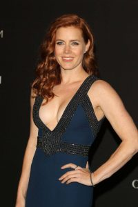Amy Adams Net Worth, Age, Husband, Height, Awards, Daughter, Images(photos), Family, Biography, Birthday, Education, Website, Wiki, Facebook, Instagram, Imdb, Twitter, Youtube (35)