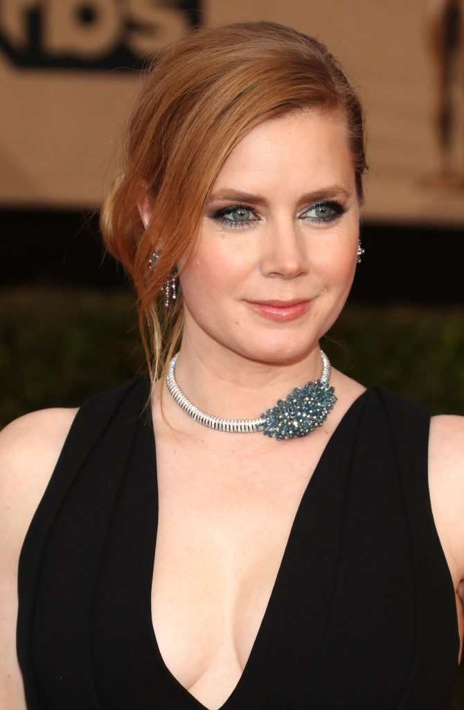 Amy Adams Net Worth, Age, Husband, Height, Awards, Daughter, Images(photos), Family, Biography, Birthday, Education, Website, Wiki, Facebook, Instagram, Imdb, Twitter, Youtube (36)
