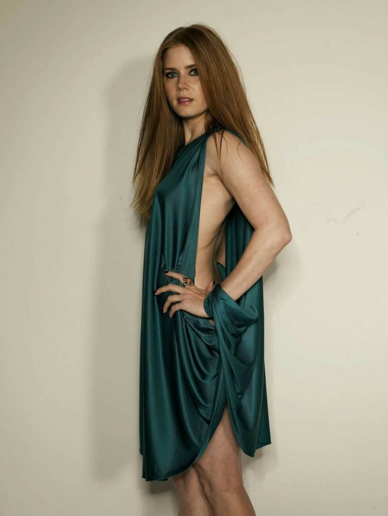 Amy Adams Net Worth, Age, Husband, Height, Awards, Daughter, Images(photos), Family, Biography, Birthday, Education, Website, Wiki, Facebook, Instagram, Imdb, Twitter, Youtube (4)