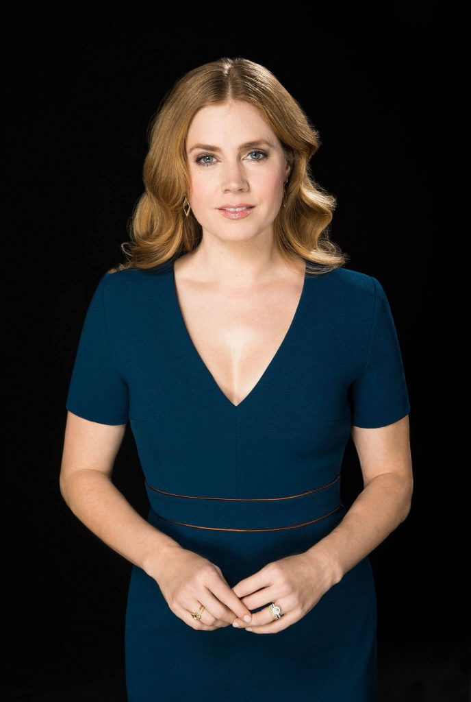 Amy Adams Net Worth, Age, Husband, Height, Awards, Daughter, Images(photos), Family, Biography, Birthday, Education, Website, Wiki, Facebook, Instagram, Imdb, Twitter, Youtube (6)