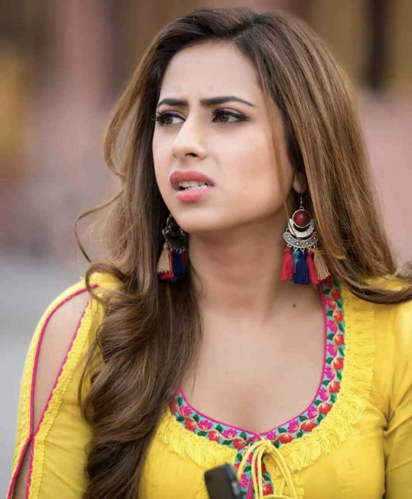 Sargun Mehta Dubey Date Of Birth, Biography, Age, Husband, Family, Height, Images(photos), Wiki, Instagram, Education, Imdb, Facebook, Twitter, Awards (12)