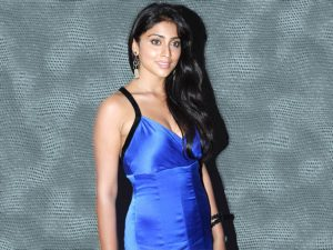 Shriya Saran Date Of Birth, Age, Husband, Married, Height, Net Worth, Biography, Images(photos), Education, Details, Wiki, Instagram, Facebook, Twitter, Imdb, Youtube, Website, Awards (51)