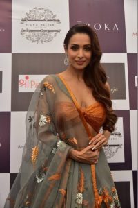 Malaika Arora Khan Biography, Husband, Age, Height, Child, Sister, Date Of Birth, Images(photo), Marriage, Net Worth, Family, Daughter, Instagram, Twitter, Wiki, Facebook, Details, Awards, Imd ( (27)