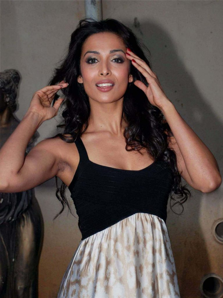 Malaika Arora Khan Biography, Husband, Age, Height, Child, Sister, Date Of Birth, Images(photo), Marriage, Net Worth, Family, Daughter, Instagram, Twitter, Wiki, Facebook, Details, Awards, Imd ( (6)