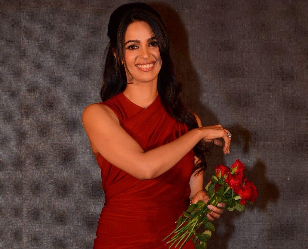 Mallika Sherawat family, marriage, husband name, age, height, wallpapers, birthday, biography, details, birthplace, instagram, wiki, imdb, twitter, youtube, facebook, awards, website
