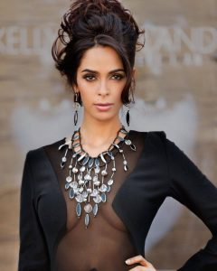 Mallika Sherawat Family, Marriage, Husband Name, Age, Height, Wallpapers, Birthday, Biography, Details, Birthplace, Instagram, Wiki, Imdb, Twitter, Youtube, Facebook, Awards, Website (46)
