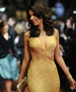 Mallika Sherawat Family, Marriage, Husband Name, Age, Height, Wallpapers, Birthday, Biography, Details, Birthplace, Instagram, Wiki, Imdb, Twitter, Youtube, Facebook, Awards, Website (56)