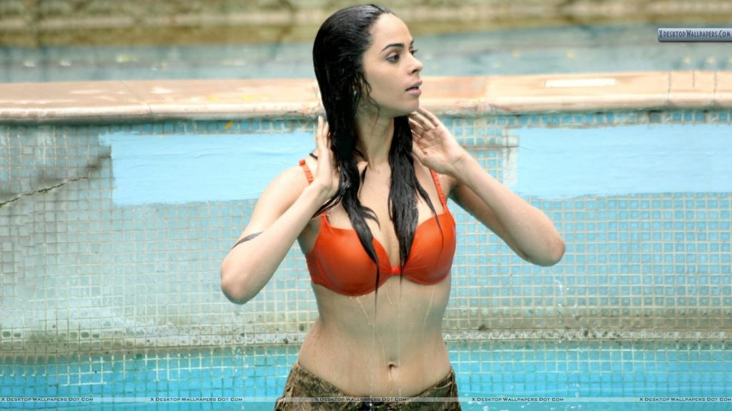 Mallika Sherawat Family, Marriage, Husband Name, Age, Height, Wallpapers, Birthday, Biography, Details, Birthplace, Instagram, Wiki, Imdb, Twitter, Youtube, Facebook, Awards, Website (57)