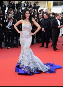 Mallika Sherawat Family, Marriage, Husband Name, Age, Height, Wallpapers, Birthday, Biography, Details, Birthplace, Instagram, Wiki, Imdb, Twitter, Youtube, Facebook, Awards, Website (64)