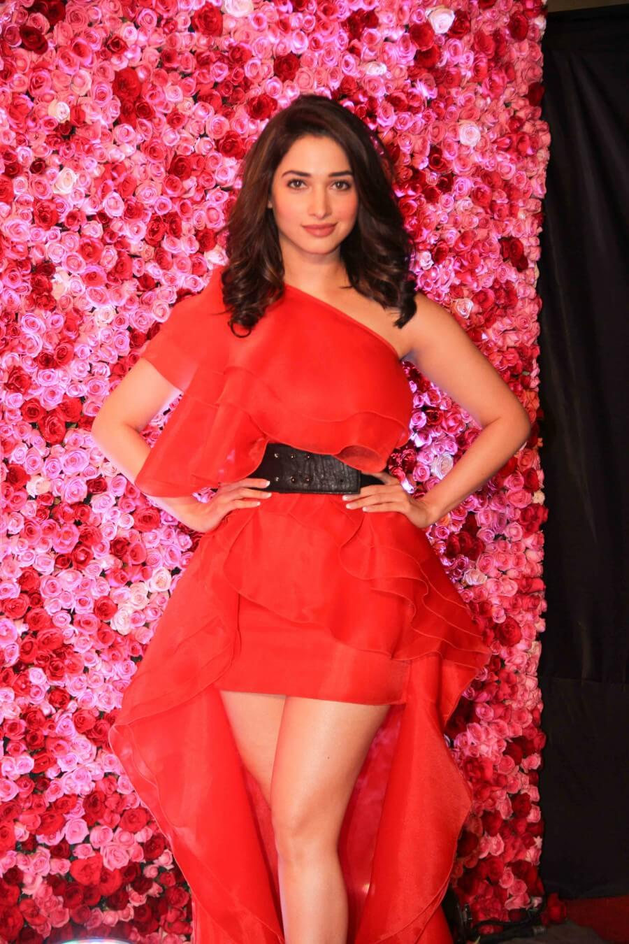 Tamannaah Bhatia Photos(images), Height, Biography, Movies, Date Of Birth, House, Details, Marriage, Boyfriend, Net Worth, Education, Instagram, Facebook, Twitter, Wiki, Imdb, Youtube (21)