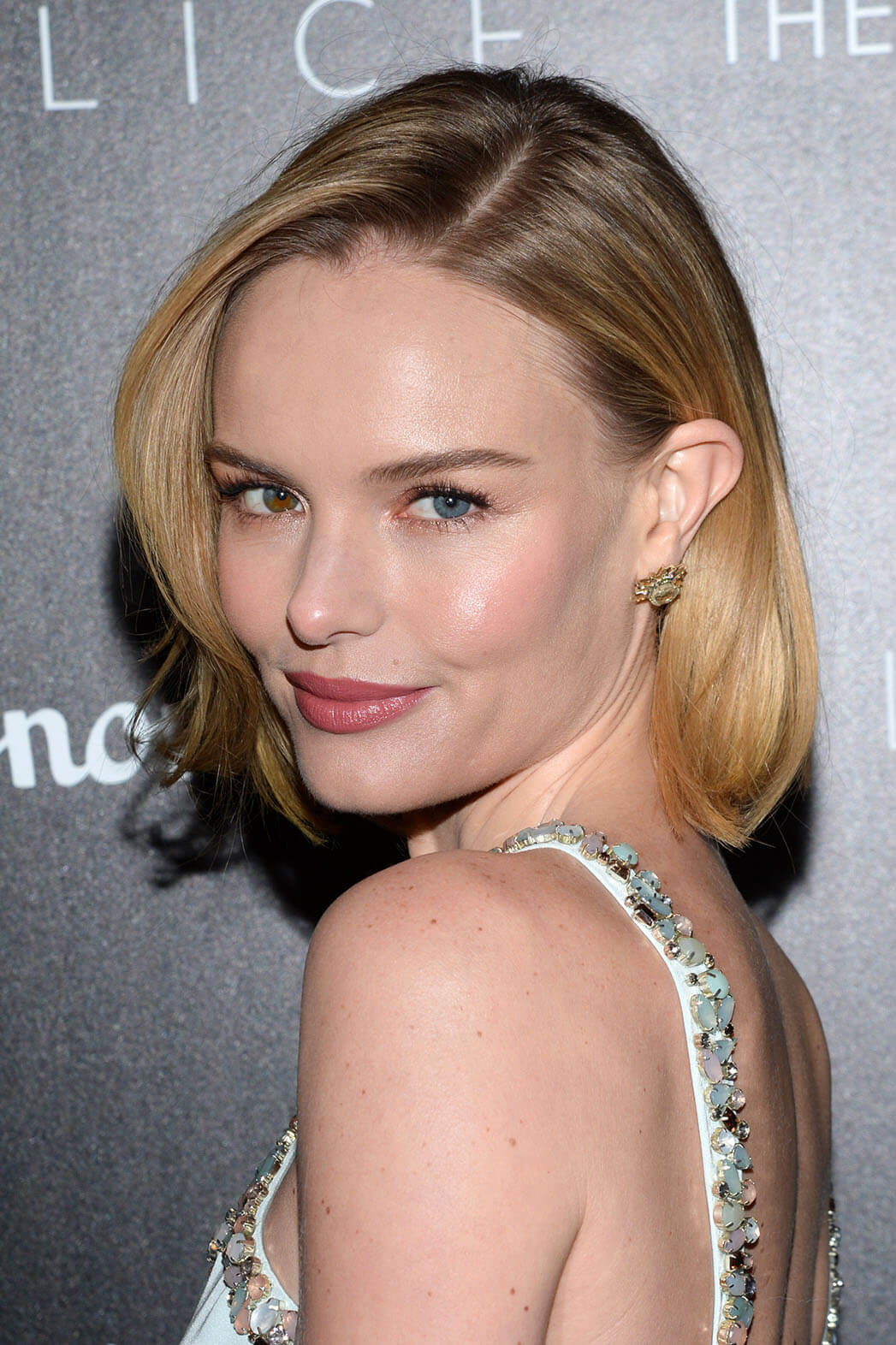 Kate Bosworth Eyes, Husband, Age, Net Worth, Height, Wedding, Haircut, Picture, Biography, Birthday, Awards, Details, Education, Imdb, Instagram, Twitter, Wiki, Facebook, Website (29)