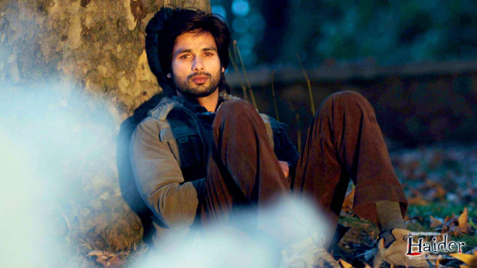 Shahid Kapoor Age, Wife, Height, Movie, Hairstyle, Family, Images(photos), Net Worth, Brother, Education, Biography, Date Of Birth, Awards, Twitter, Instagram, Wiki, Facebook, Imdb, Website (35)