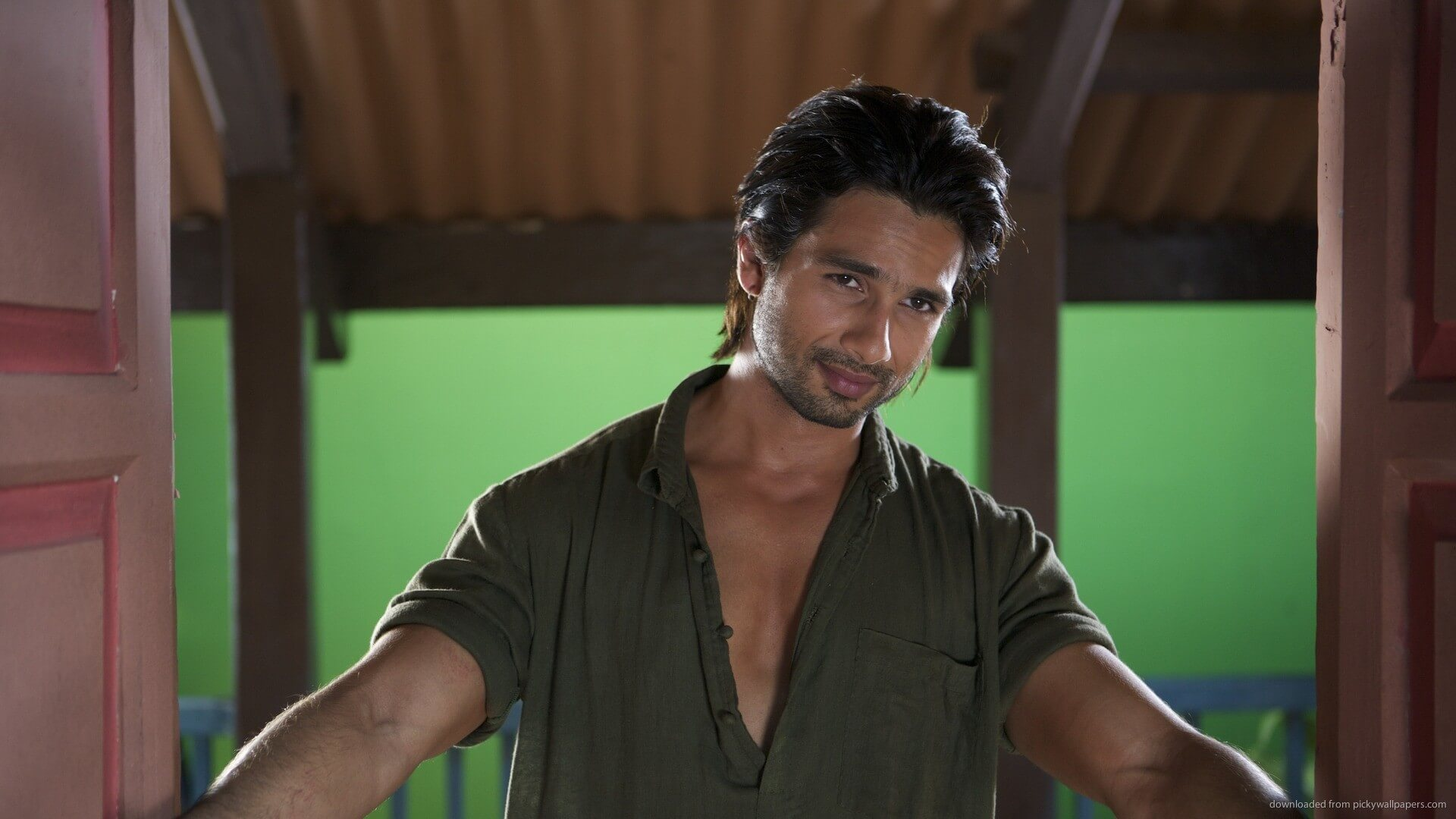 Shahid Kapoor Age, Wife, Height, Movie, Hairstyle, Family, Images(photos), Net Worth, Brother, Education, Biography, Date Of Birth, Awards, Twitter, Instagram, Wiki, Facebook, Imdb, Website (41)