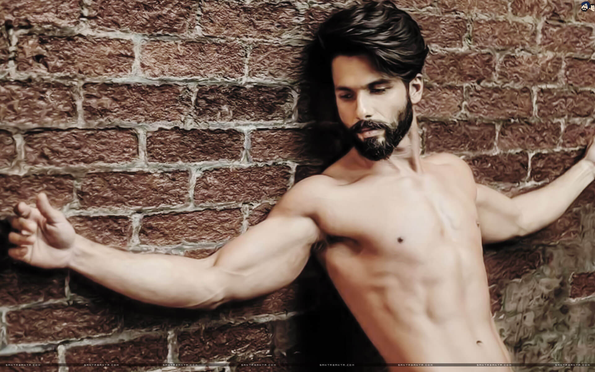 Shahid Kapoor Age, Wife, Height, Movie, Hairstyle, Family, Images(photos), Net Worth, Brother, Education, Biography, Date Of Birth, Awards, Twitter, Instagram, Wiki, Facebook, Imdb, Website (52)