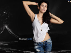 Mandana Karimi Age, Husband, Height, Marriage, Biography, Wedding, Bigg Boss, Wallpaper, Pics, Instagram, Facebook, Twitter (24)