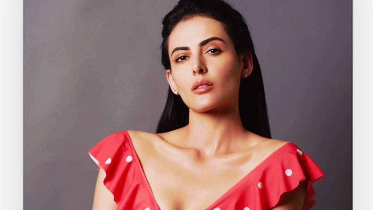 Mandana Karimi Age, Husband, Height, Marriage, Biography, Wedding, Bigg Boss, Wallpaper, Pics, Instagram, Facebook, Twitter (6)