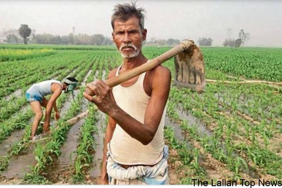 14 मई यानी अक्षय तृतीया (Akshay tritiya 2021) के दिन पीएम किसान योजना (PM Kisan) के तहत किसानों की अगली किस्त जारी करेंगे.